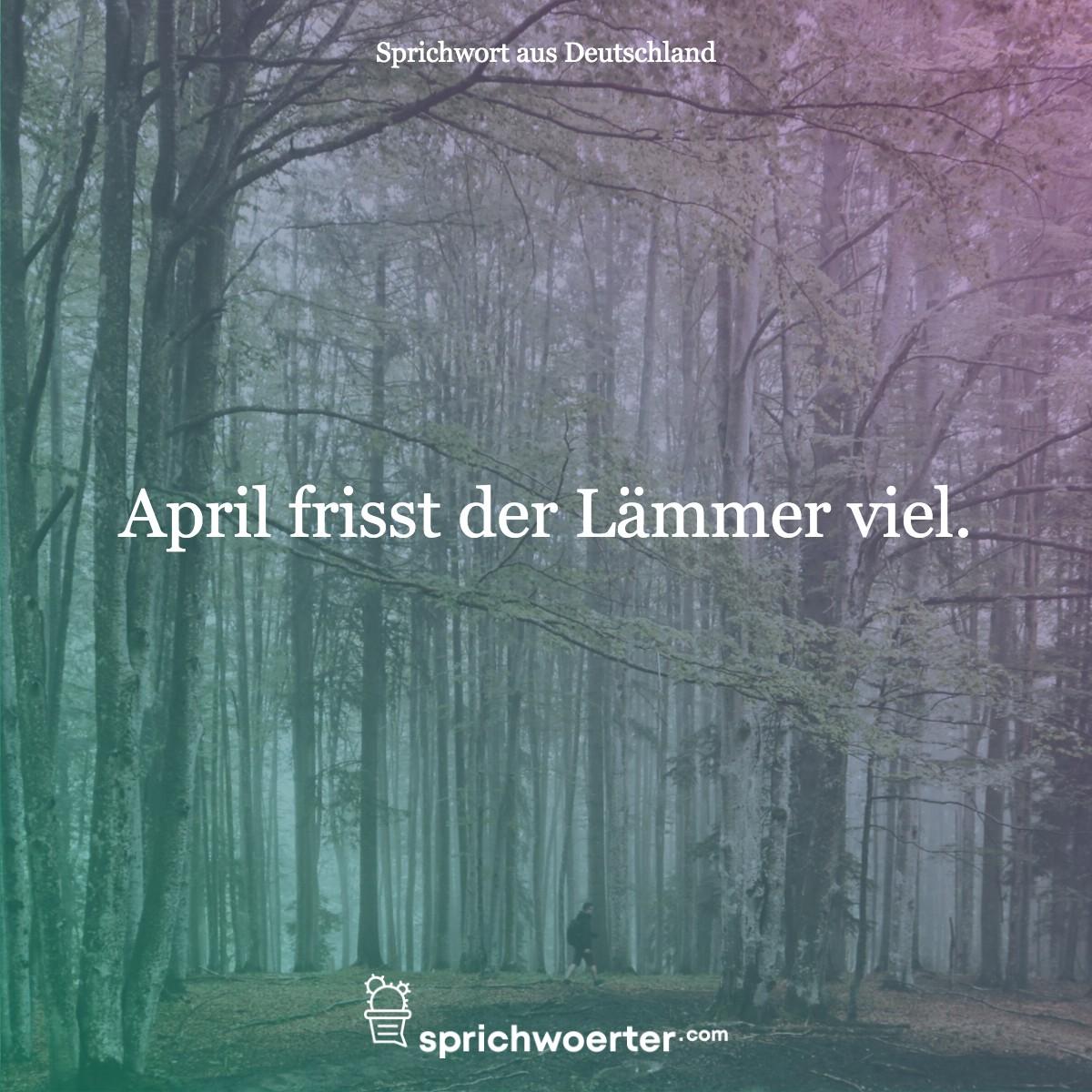April frisst der Lämmer viel. - Sprichwort, Spruch, Weisheit, Redewendung